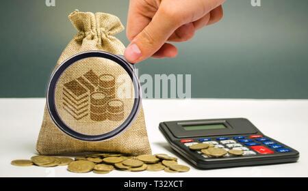 Lupa mira la bolsa de dinero con monedas y una calculadora. Cálculo de beneficios y análisis de los ingresos. Las tasas de interés. La rentabilidad. El rendimiento. M