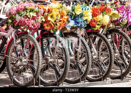 Colombia, Cartagena, Centro de la Ciudad amurallada Vieja, Getsemani, alquiler de bicicletas, cestas decorativas de flores, rueda, turismo visitantes viajar travelin
