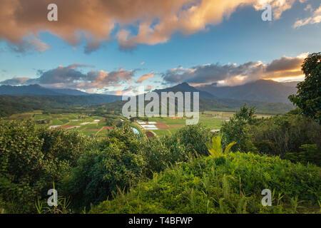 Vista desde el valle de Hanalei Mirador en la isla de Kauai Hawaii, EE.UU.