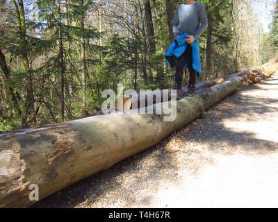 El niño caminando sobre troncos de árbol estimula el desarrollo motor y el equilibrio Foto de stock