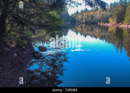 Reflexiones sobre el lago de arroz, Vancouver, British Columbia