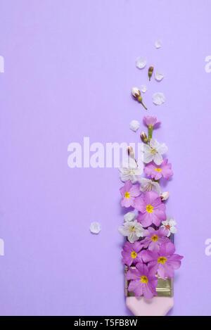 El concepto creativo. Brocha con flores de cerezo en flor violeta sobre Violeta pastel de fondo. Naturaleza mínima composición con copia espacio.lay, plana