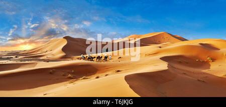 Paseos en camellos entre el Sahara dunas de Erg Chebbi, Marruecos, África