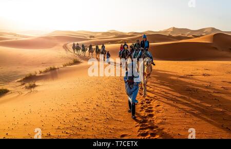 Merzouga, Marruecos - Mayo 02, 2019: Caravana caminando en Merzouga desierto de Sáhara en Marruecos
