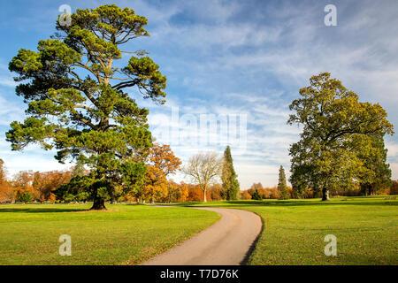 Rushmore Park Golf Club en otoño. Wiltshire, Reino Unido.
