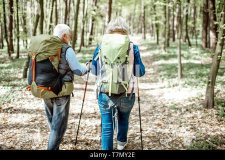 Las parejas ancianas caminatas con mochilas y bastones de trekking en la selva, vista posterior. Concepto de un estilo de vida activo sobre jubilación