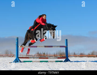 La amazona caucásica es superar el obstáculo en un caballo negro en invierno.