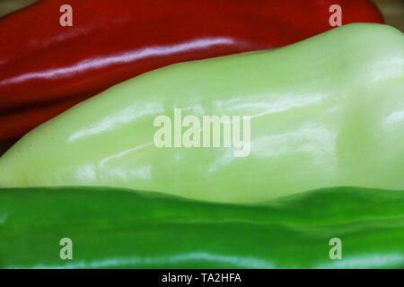 Pimientos frescos tricolor húngara en formación. Muy sabrosa y verduras saludables.