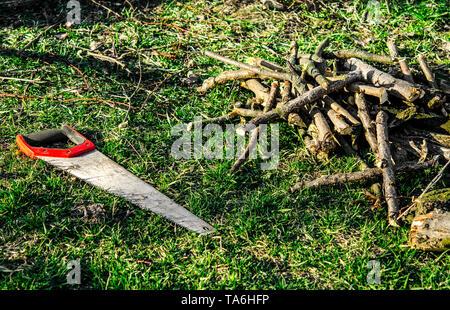 Trabajo de jardín. Sierra de mano con un mango rojo yace sobre la hierba verde junto al cortar las ramas