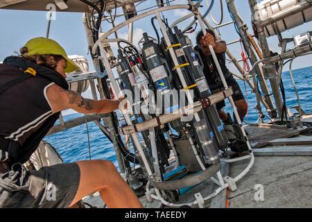 Tara Oceans Expeditions - Mayo de 2011. El ocean sunfish, Mola mola mola, o común, es la mayor conocida en el mundo de peces óseos. Tiene un peso promedio de los adultos de 1.000 kg (2.200 lb). La especie es nativa de las aguas tropicales y templadas de todo el mundo. Se asemeja a una cabeza de pescado con una cola, y su cuerpo principal está aplanado lateralmente. Sunfish pueden ser tan altos como son largos cuando sus aletas dorsal y ventral están extendidos. Sunfish viven en una dieta que consiste principalmente de medusas, sino porque este