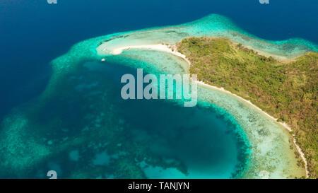 Vista aérea de playa tropical en la isla Ditaytayan. isla tropical con barra de arena blanca, palmeras y verdes colinas. Viajes concepto tropical. En Palawan, Filipinas