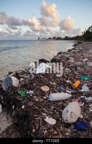 La basura plástica ha arrojado en una playa remota en el Mar Caribe frente a las costas de Belice. Esta área es parte de la Barrera Arrecifal Mesoamericana.