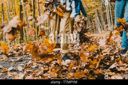 Bajo la sección de niños caminando sobre las hojas secas sobre el sendero en el bosque