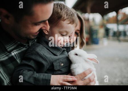 Close-up de lindo hijo jugando con conejo por padres en la granja Foto de stock