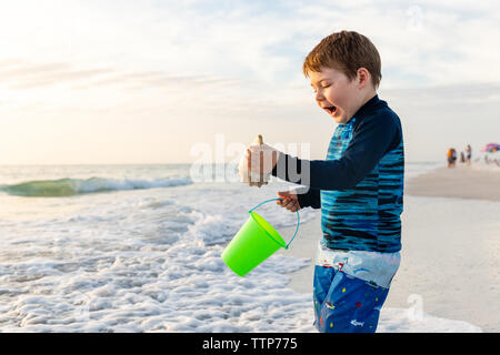 Niños entusiasmados por recoger una concha en la playa durante las vacaciones Foto de stock