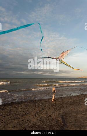 Emocionada joven volar una cometa de dragón en la playa Foto de stock