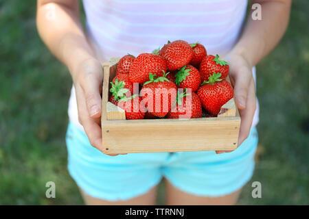 Mujer sosteniendo una caja de madera con fresas frescas piscina