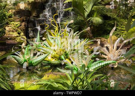 Fiori Verdi es una escultura en vidrio contemporáneo USA artista Dale Chihuly, ubicada en la casa templada en los jardines Kew, Richmond, Londres, Reino Unido.