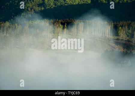 Paisaje neblinoso, vista de Bodenfelde, distrito de Northeim, Baja Sajonia, Alemania, Europa