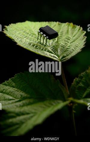 Entidad electrónica a través de una hoja de planta