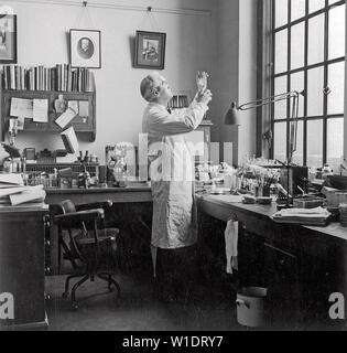 ALEXANDER Fleming (1881-1955) biólogo escocés, médico y Premio Nobel de la paz Foto de stock