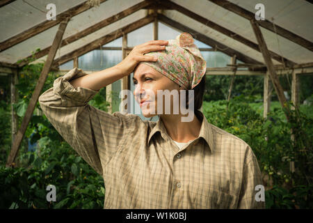 Foto de descontentó cansada mujer jardinero erguido sobre plantas de tomate en invernadero