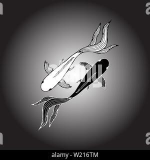 Resumen dibujadas a mano de dos peces carpa. Peces koi dibujados a mano. Carpa japonesa. Vista desde arriba. Foto de stock