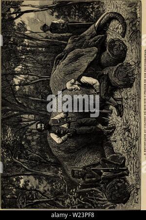Imagen de archivo de la página 178 de Angola á la contra-costa; descripção. De Angola á la contra-costa; de uma viagem atravez descripção do continente africano deangolacontrac02cape Año: 1886