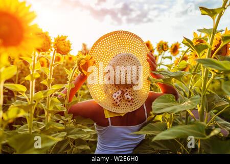 Mujer mayor caminando en el florido campo de girasol celebración hat y admirando la vista. Vacaciones de verano