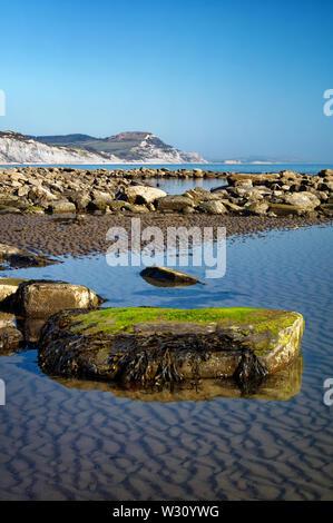 Reino Unido,Dorset,Lyme Bay en la marea baja mirando hacia la tapa de oro