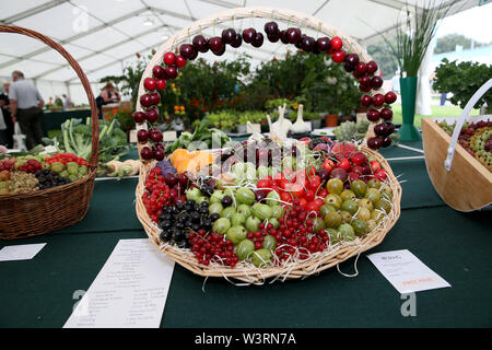 Knutsford, Reino Unido, 17 julio, 2019. Una fruta ganadora en la pantalla RHS anual flower show, Tatton Park, Knutsford, Cheshire, Reino Unido. Crédito: Barbara Cook/Alamy Live News