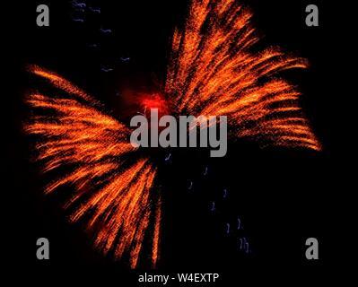 Libélula en vuelo, distorsión de los fuegos artificiales, espectáculo de fuegos artificiales del 4 de julio, el condado de Moffat, Craig, Colorado. 2019