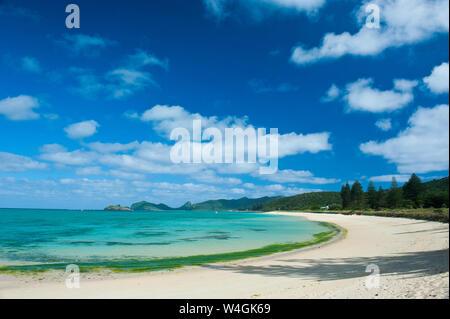 Playa de arena blanca en la isla de Lord Howe, Nueva Gales del Sur, Australia