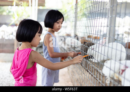 Asia China poco hermanas alimentar los conejos con zanahorias en la granja al aire libre