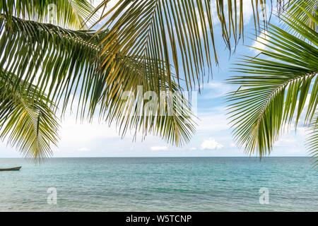 Pintoresca isla costera tropical con agua de color turquesa, junto a la playa, rodeado de cocoteros. Lugar de vacaciones de ensueño del sur de Asia. Foto de stock