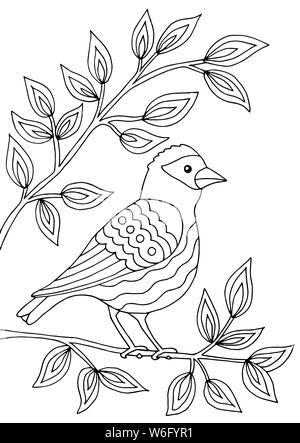 Lindo Pájaro En Una Rama Del árbol Floreciente Cantando