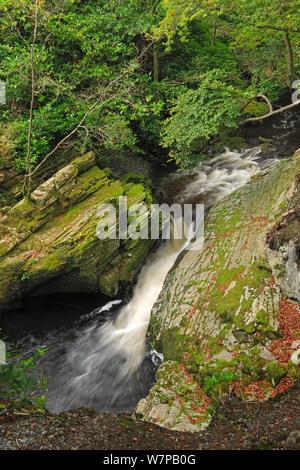 Río Tollymore Shimna, Forest Park, Newcastle en el Condado de Down, Irlanda, septiembre de 2012