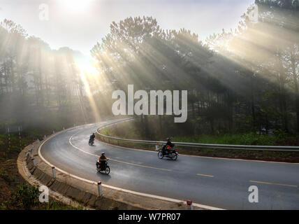 Coches o motociclistas circulando en carretera del país a través de un bosque de pinos con rayos brillando en la niebla bella carretera, este es un hermoso camino en Da Lat.