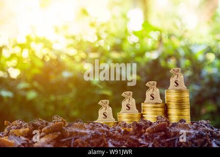 Hacer dinero y dinero en concepto de inversión. Una bolsa de dinero en lugar de la pila de monedas en tierra buena y la naturaleza del fondo con la luz del sol. Representa a largo plazo