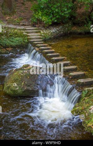 En el Stepping Stones Tollymore Park