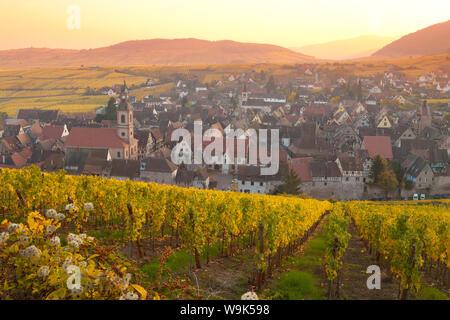 Descripción general de Riquewhir y viñedos al atardecer en otoño, Riquewihr, Alsacia, Francia, Europa