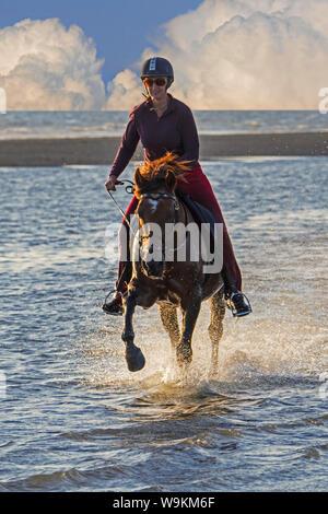 Amazona / Mujer jinete a caballo al galope a través del agua en la playa, siendo la próxima tormenta