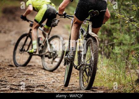 Volver dos ciclistas de montaña en bicicleta cuesta arriba en las raíces de los árboles