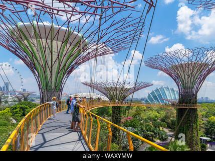 El OCBC Skyway, un pasaje aéreo en el Supertree Grove, jardines junto a la bahía, la ciudad de Singapur, Singapur