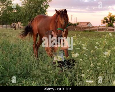 Bella mujer besando a caballo sobre césped durante la puesta de sol Foto de stock