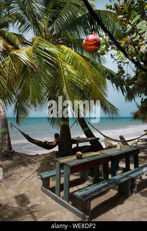 Colombia, la isla de Providencia, el hombre en una hamaca colgada entre dos palmeras de coco de Rolland's bar, situado en la playa de Manzanillo, bañada por las aguas color turquesa del Caribe