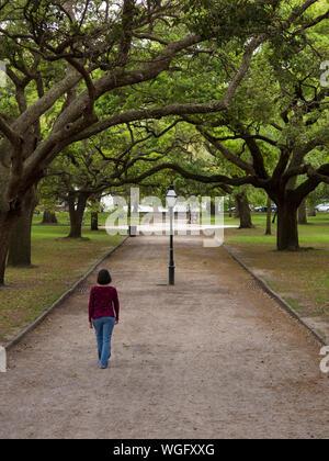 Mujer caminando por ruta arbolada en Charleston, Carolina del Sur