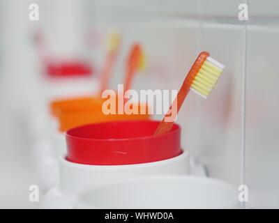 Close-up de cepillos de dientes en contenedores en el baño