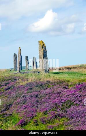 Anillo de Brodgar erigido 2500BC-2000Bc es el tercer círculo de piedra más grande de las Islas Británicas.