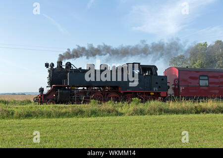 Tren de vapor Molli, Wittenbeck, Mecklenburg-West Pomerania, Alemania